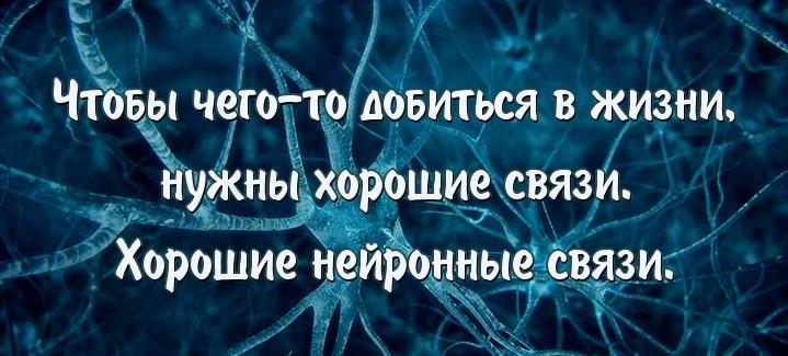 neuron-links